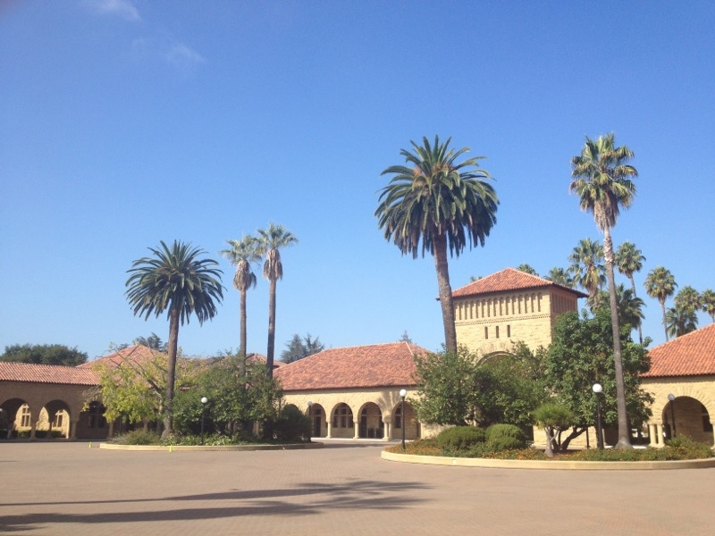 Stanford Palm Tree Campus